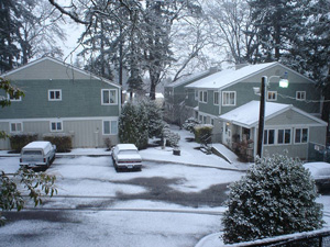 Winter Inspections for Property Management