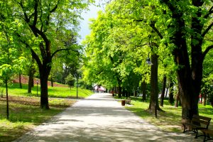 Park Maintenance Checklist